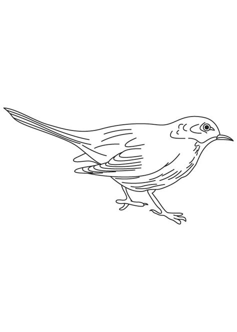 Black Bird Coloring Page | sr71 black bird colouring pages