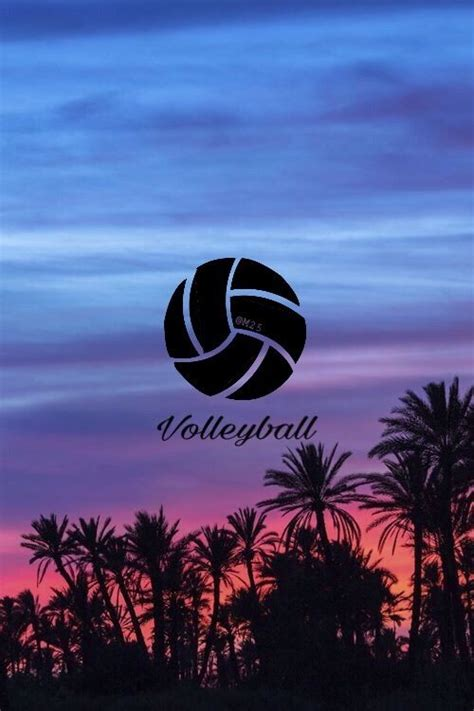 wallpaper for iphone volleyball the 25 best volleyball backgrounds ideas on pinterest