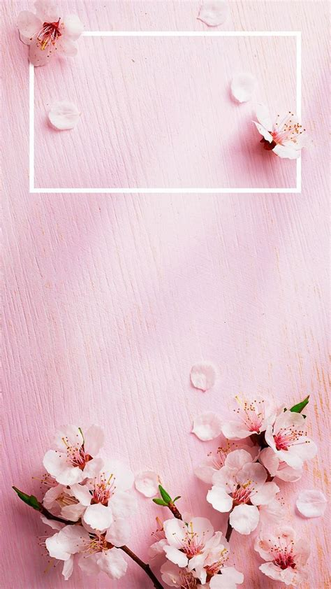 iphone  wallpaper rose gold lock screen   iphone