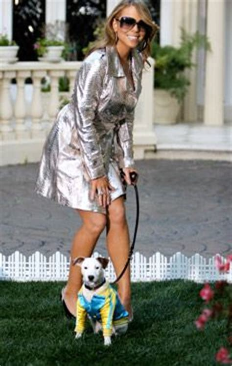 mariah carey dog house best 25 mariah carey glitter ideas on pinterest gold glitter nail polish gold