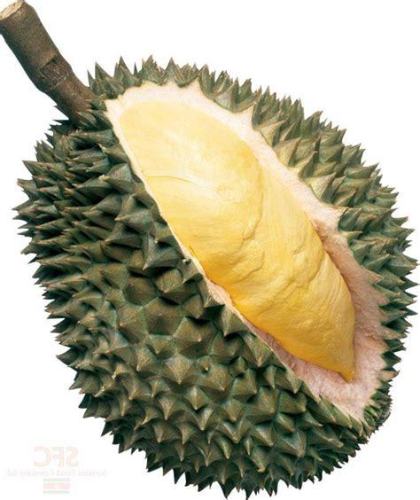bak mendapat durian runtuh sharing    share