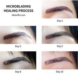 eyebrow microblading embroidery review before amp after