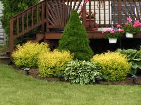 Landscaping area landscaping around decks shrubs