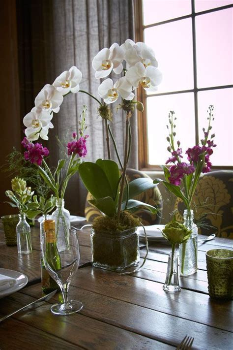 Phalaenopsis Orchid Centerpiece Planning Our 26 Best Moroccan Engagement Images On