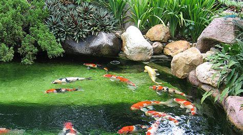 backyard kl image gallery landscape malaysia