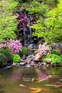 japanese gardens offers a tranquil respite in