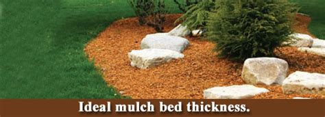 ideal mulch bed thickness lawn care business marketing tips gopherhaul blog