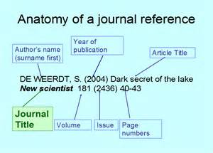 understanding a journal reference