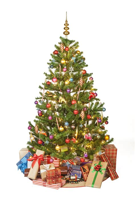 what is the sybolises cgristmas tree what is the real significance and meaning of the tree