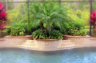 swimming pool photos of swimming pool landscaping