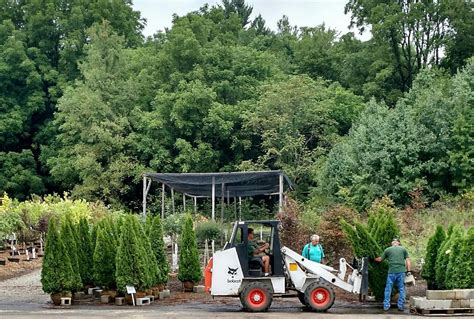 Garden Center Akron Ohio Family Owned Garden Center In Akron Canton Road Garden