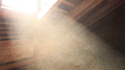 dust to lights dust particles in light pixshark com images