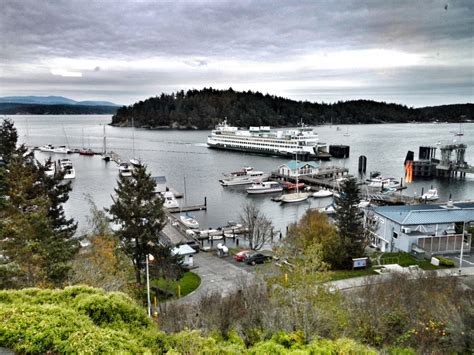 friday harbor house friday harbor house hotelroomsearch net