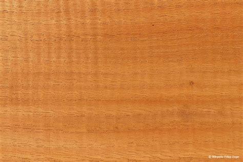 Holzarten Erkennen by Holzarten Erkennen 220 Bersicht Mit 33 Weich Und