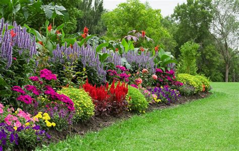 a flower garden 10 tips for growing a stunning organic flower garden on a