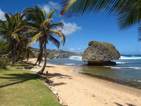 best barbados best barbados beaches