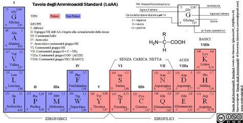 aminoacidi lettere tavola periodica amminoacidi novit 224 2012