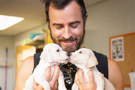 justin theroux dog austin pets alive is adored by justin theroux and other