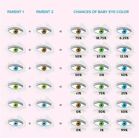 what color hair will my baby have calculator if rachael s eyes were green and deckards were not brown