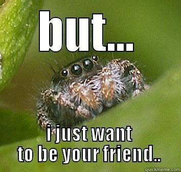 Friendly Spider Meme Picture Webfail - it s basically impossible to be afraid of lucas the most