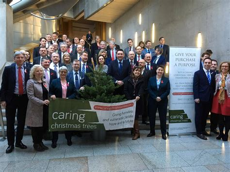 collection caring christmas trees edinburgh pictures