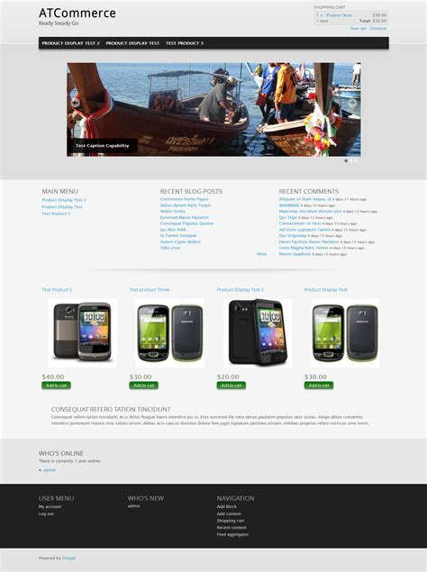 drupal theme at commerce top 5 drupal out of the box themes to use for e commerce