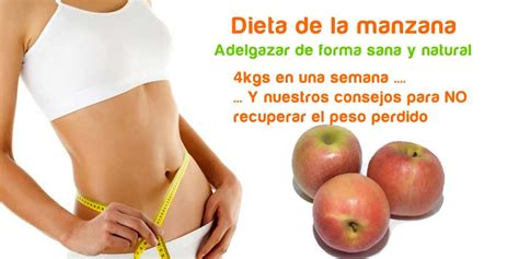 la dieta de la 8416449554 dieta de la manzana adelgazar de forma natural dieta frutas manzana propiedades comefruta