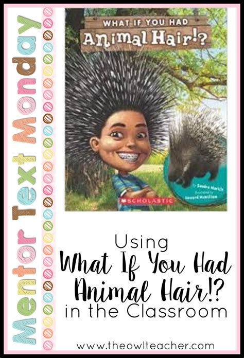 animals with hair books mtm what if you had animal hair the owl