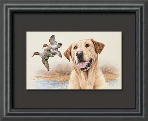 yellow lab prints framed country labs picture print art interior home decor art ebay in the marsh yellow lab dog float mount framed art print