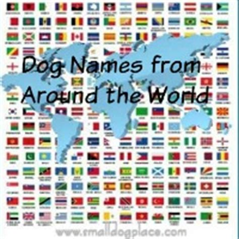country puppy names names