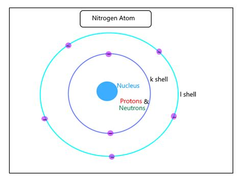 Protons In Fluorine by Protons In Nitrogen How Many Protons Are In Nitrogen