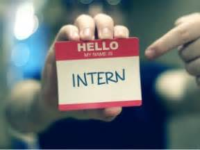 Do Internships Count As Years Of Experience Mba by Summer 2013 Internship Profiles Das Tor