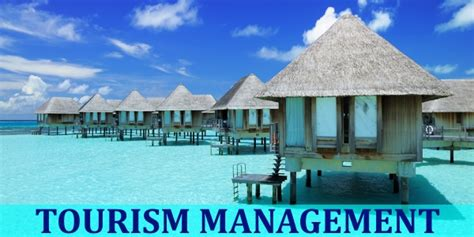 Mba In Travel And Tourism by Mba Travel Tourism Management Courses In India