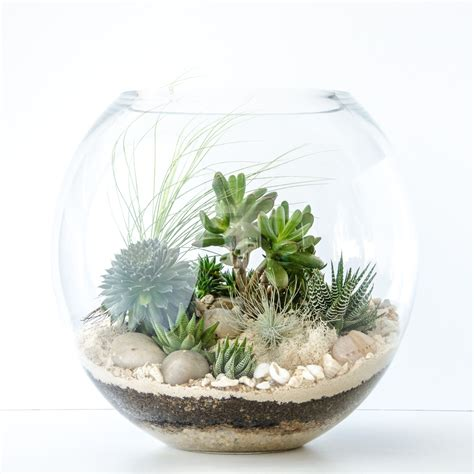 Where Do Interior Designers Shop Get Your Quirky On And Customise Happy Place Terrariums