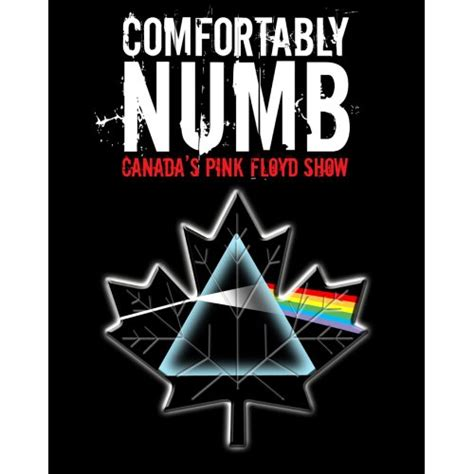 Comfortably Numb Canada S Pink Floyd Show In Gatineau