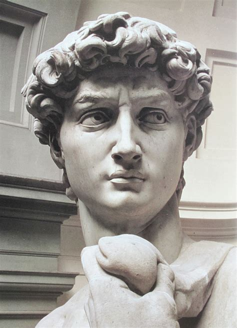 epph michelangelo sculpture image gallery head of david by michelangelo photograph by carl purcell