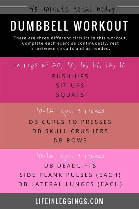 dumbbell workout most popular workout programs