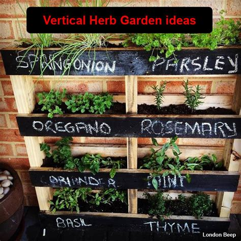 herb garden diy 20 beautiful diy vertical herb garden ideas 2015