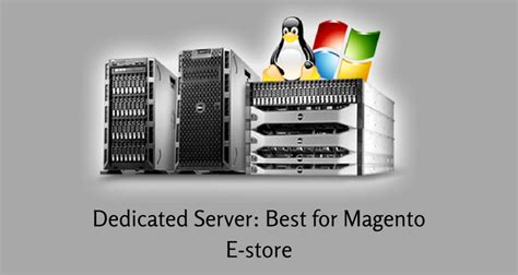 best server for magento why dedicated server is best for magento e store