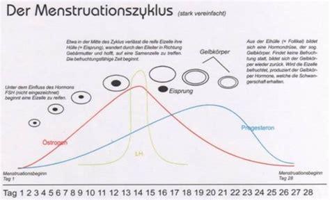 wann setzt wirkung der pille ein vom der menstruation