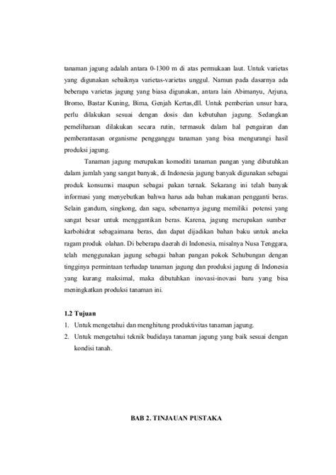 Contoh Laporan Jagung | laporan produksi tanaman jagung