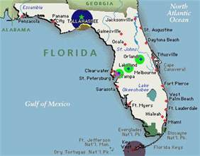 capital of florida map florida state tree demarcotopia