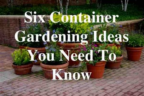 Planter Border Ideas by Six Container Gardening Ideas You Need To Know