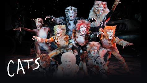 cats musical jellicle songs part 1 cats the musical