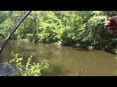 Reel Catfish Mtb fishing for white catfish at the cooper river camden nj