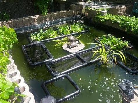 Planter Pond by Pond Islands Images Frompo 1
