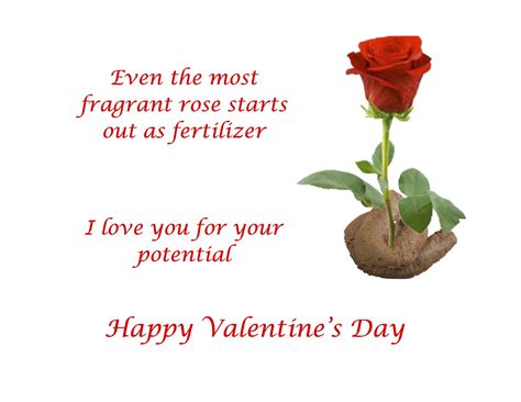 Valentines Day Roses That Speak To You by To Find S Day Cards The Write Choice