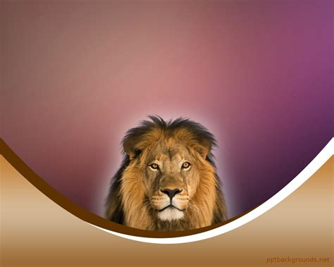 template powerpoint lion free the lion king backgrounds for powerpoint animal ppt