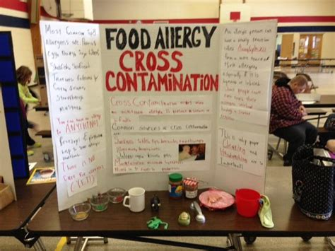 Xenohormones Detox by 17 Best Images About 1st Grade Science Fair Projects On