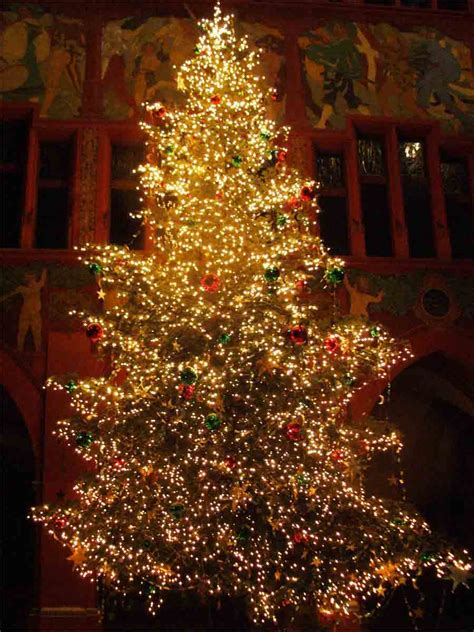 Beautiful Christmas Trees | image world beautiful christmas tree pictures